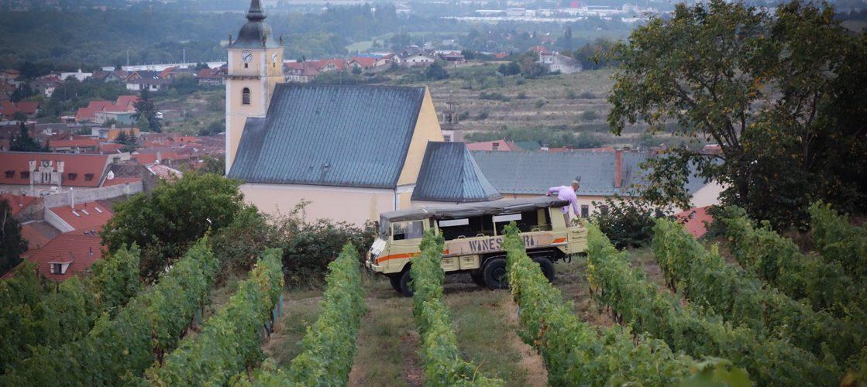 WINE SAFARI WINESAFARI SVATY JUR SLOVAKIA -100002